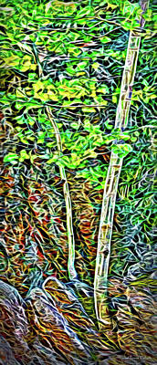 Digital Art - Quiet Forest Interlude by Joel Bruce Wallach