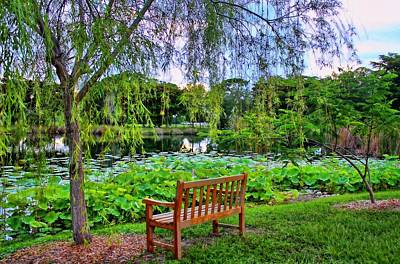 Photograph - Quiet Garden by HH Photography of Florida