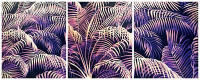 Photograph - Palm Frond Triptych by Jessica Jenney