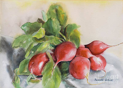 Painting - Radishes by Pamela Schick
