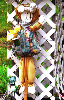 Photograph - Rag Doll by Ron Roberts