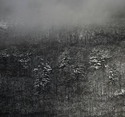 Photograph - Ragged Mountain Pines In Snow by John Meader