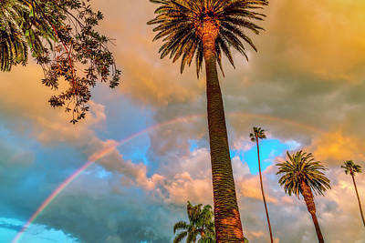 Photograph - Rainbow Over The Palms by Gene Parks