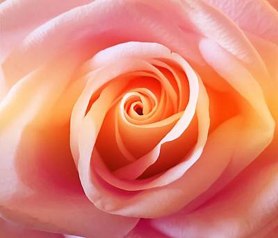 World Forgotten Rights Managed Images - Rainbow Rose Royalty-Free Image by Christina Ford