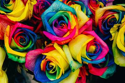 Painting - Rainbow Roses by Shabby Chic and Vintage Art