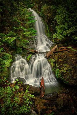 Photograph - Rainier Falls Creek Falls by Dan Mihai