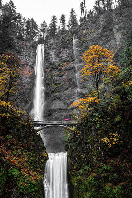 Photograph - Rainy Day At Multnomah Falls by Wes and Dotty Weber
