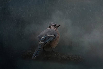 Photograph - Rainy Day Blues  by Kelley Parker