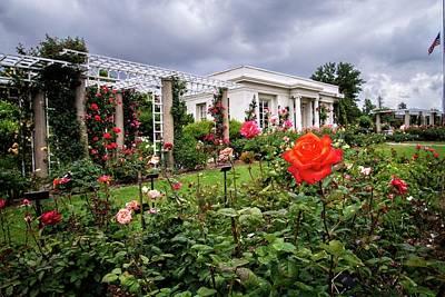 Photograph - Rainy Day Roses At The Huntington Tea House by Lynn Bauer