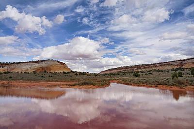 Photograph - Rainy Season Reflections by Leda Robertson
