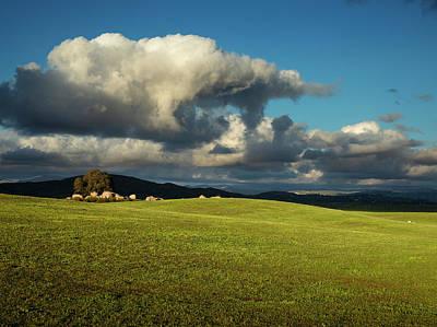Photograph - Ramona Grasslands Hills by William Dunigan