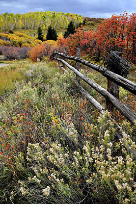 Photograph - Ranch Scene Fall Colors On Last Dollar Road by Ray Mathis