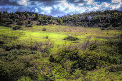 Photograph - Rancho Carrillo  by Alison Frank