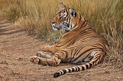 Painting - Ranthamboure Road Block Tiger by Alan M Hunt