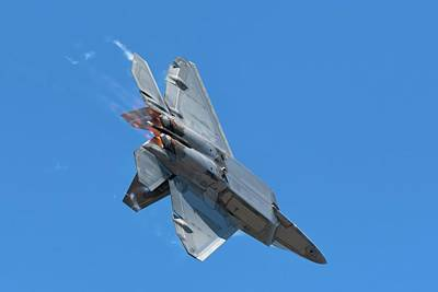 Photograph - Raptor Turning And Burning by Chris Buff