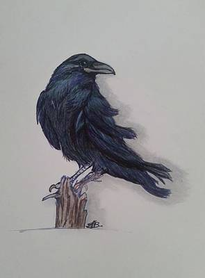 Drawing - Raven in the Wind by Julie Belmont