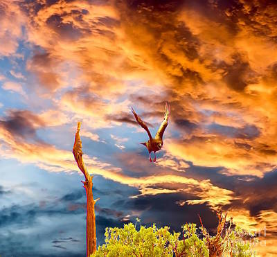 Photograph - Raven's Flight by Sherry Little Fawn Schuessler