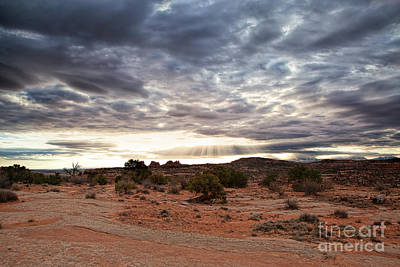 Photograph - Rays Of Morning by Jim Garrison