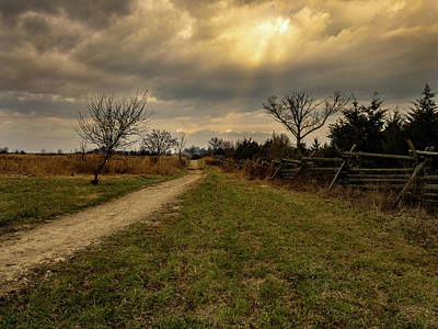 Photograph - Rays On The Path by Dan Urban