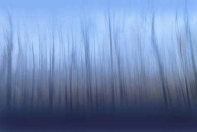 Photograph - Reaching by Davin McLaird