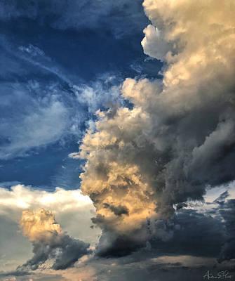 Photograph - Reaching Toward Heaven by Andrea Platt