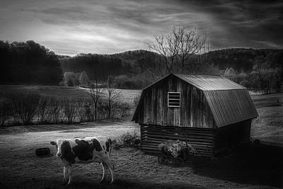 Photograph - Ready To Greet The Morning Black And White by Debra and Dave Vanderlaan