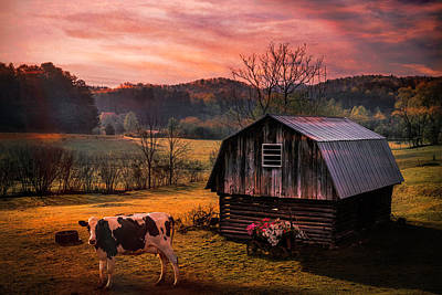 Photograph - Ready To Greet The Morning In Autumn by Debra and Dave Vanderlaan