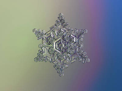 Photograph - Real Snowflake - 05-feb-2018 - 15 Alt by Alexey Kljatov