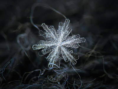 Photograph - Real Snowflake - 18-dec-2018 - 3 by Alexey Kljatov