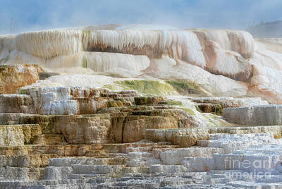 Photograph - Rebirth - Mammoth Hot Springs by Sandra Bronstein