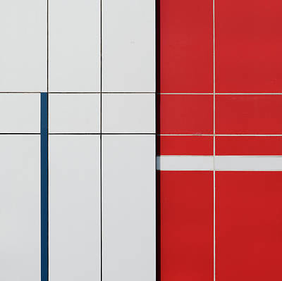 Photograph - Red And Blue by Stuart Allen