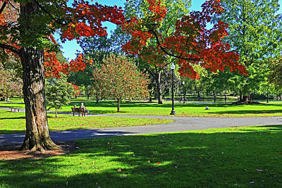 Photograph - Red Autumn Tree In The Boston Public Garden Boston Ma by Toby McGuire