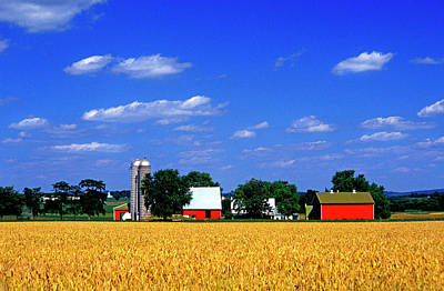 Photograph - Red Barn And Field Of Wheat by Paul W Faust -  Impressions of Light