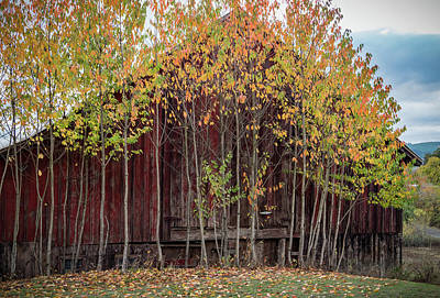 Photograph - Red Barn Decoration by Jean Noren
