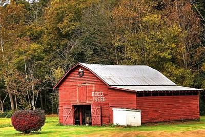 Photograph - Red Barn Feed And Seed by Carol Montoya
