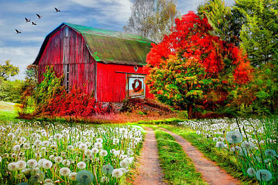 Photograph - Red Barn In Early Autumn  by Debra and Dave Vanderlaan
