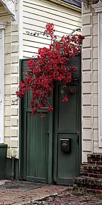 Photograph - Red Bougainvillea Over Green Door by Debi Dalio