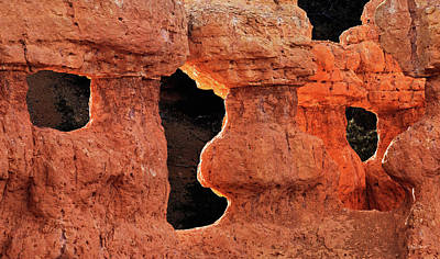 Photograph - Red Canyon by Leland D Howard