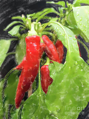Western Art - Red chillies by Frank Heinz