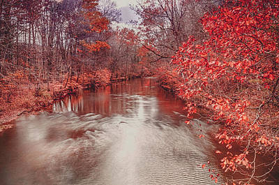 Photograph - Red Colors Of Autumn by Dan Urban