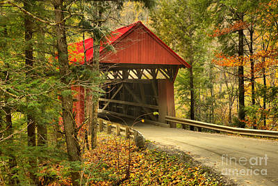Photograph - Red Covered Bridge In The Woods by Adam Jewell