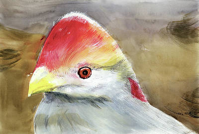 Painting - Red Crested Turaco by Anil Nene
