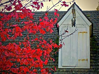 Photograph - Red... by Don Moore