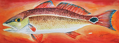 Painting - Red Drum by Kathy Sturr