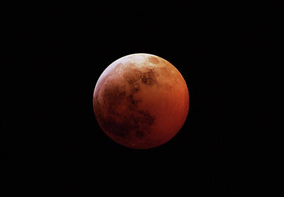 Photograph - Red Eclipsed Moon by Photography By Escobar Studios