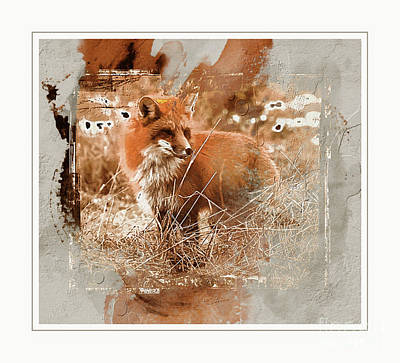 Mixed Media - Red Fox ...abstract  by Elaine Manley
