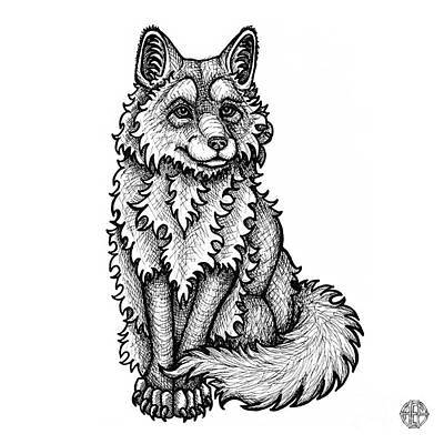 Drawing - Red Fox by Amy E Fraser
