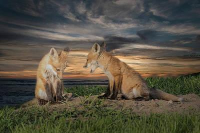 Red Fox Kits - Past Curfew Art Print