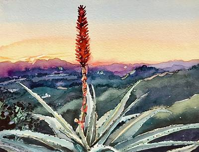 Panoramic Images - Red Hot Poker Sunset - Topanga by Luisa Millicent