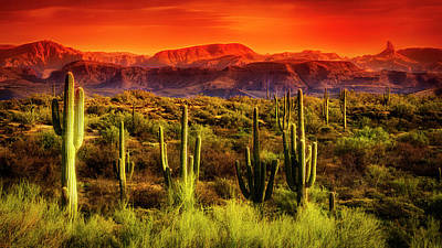 Photograph - Red Hot Sonoran Skies  by Saija Lehtonen